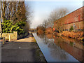 SJ7698 : Bridgewater Canal by David Dixon