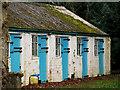J5569 : Outbuildings, Mount Stewart : Week 11