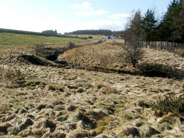Glen Burn and Glenburn Reservoir