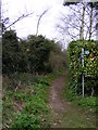 TM3977 : Footpath to Halesworth Bowling Green by Adrian Cable