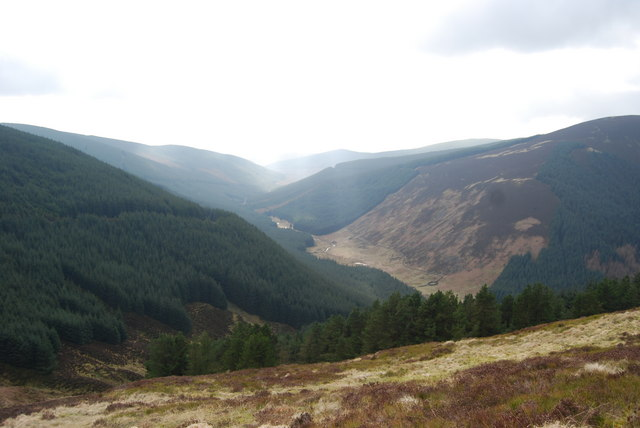 Looking down Wamphray Burn from Cowan Fell