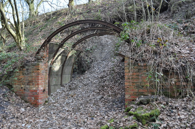 Duckmanton Railway Cutting Geological 169 Ashley Dace