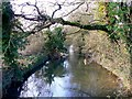 SU0294 : River Thames, south of Somerford Keynes (1 of 2) by Brian Robert Marshall