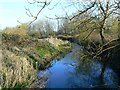SU0294 : River Thames, south of Somerford Keynes (2 of 2) by Brian Robert Marshall