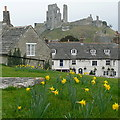 SY9682 : View from Corfe churchyard : Week 11