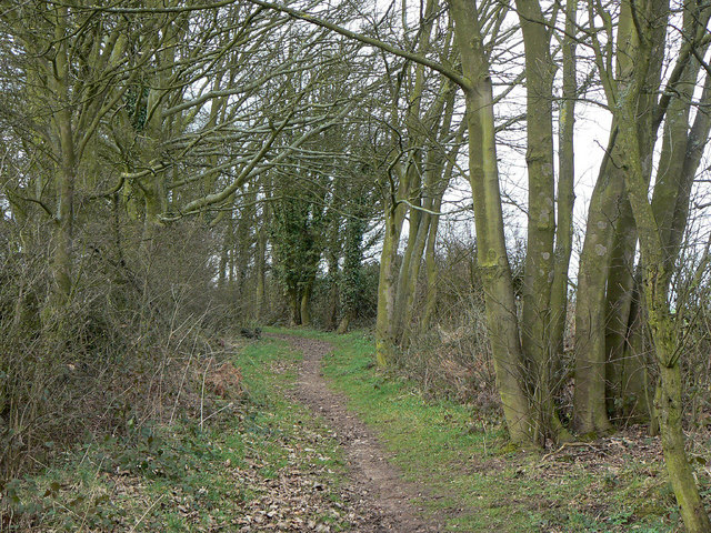 Bridleway near Lambley House