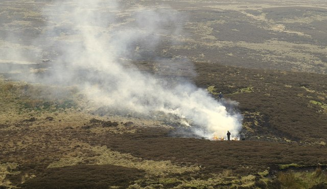 Heather burning at White Coppice