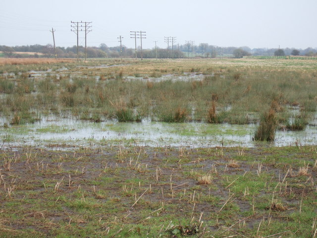 Boggy land near King's Lynn