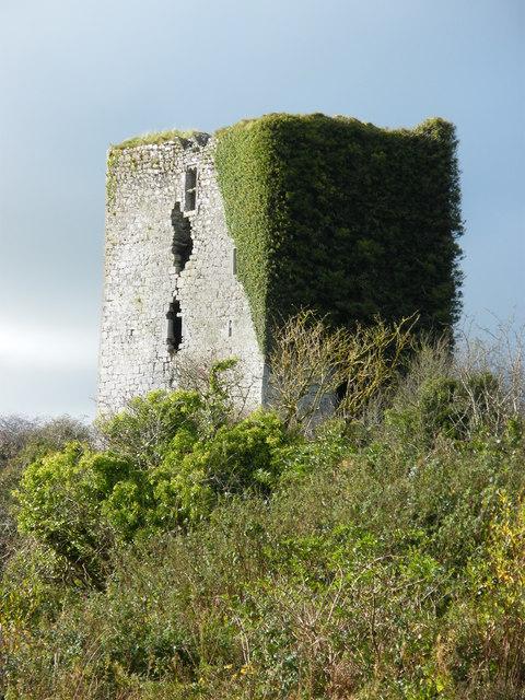 Derrydonnell Castle