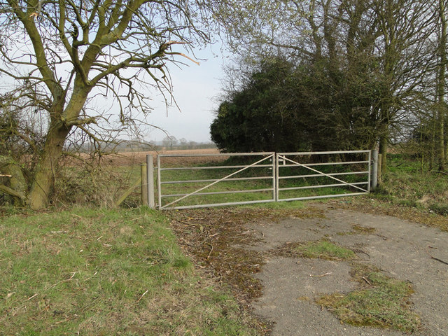 Metal field gate alongside the A140 near Banningham