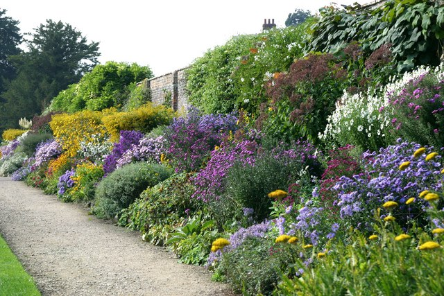 Herbaceous border at waterperry stuart logan geograph for Herbaceous border design examples