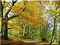 SD7013 : Longworth Lane, Dunscar. by Philip Platt