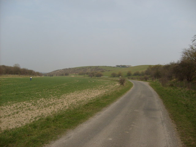 Road through Springwell Field
