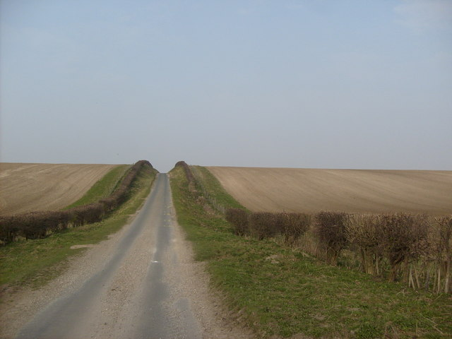 Minor road heading North towards South Dalton Wold