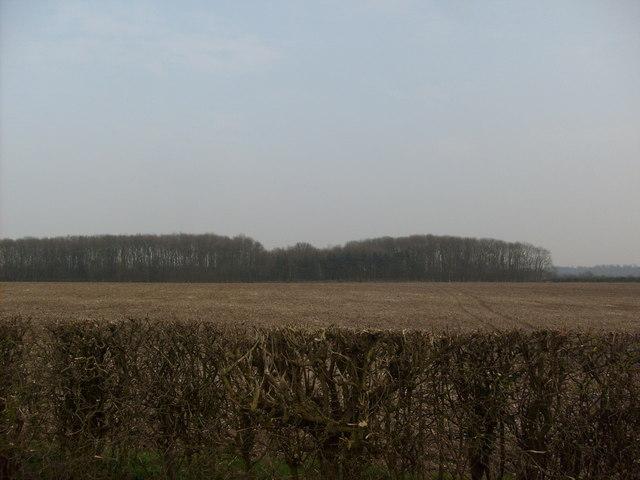 Field towards Admirals