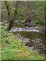 SD5341 : River Brock by Peter Bond