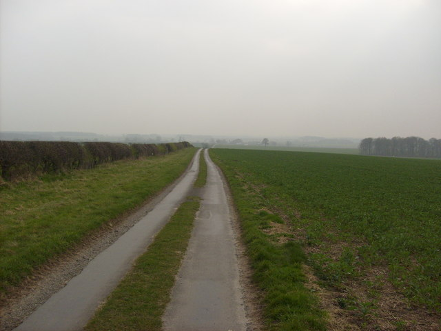 Lane towards Bracken