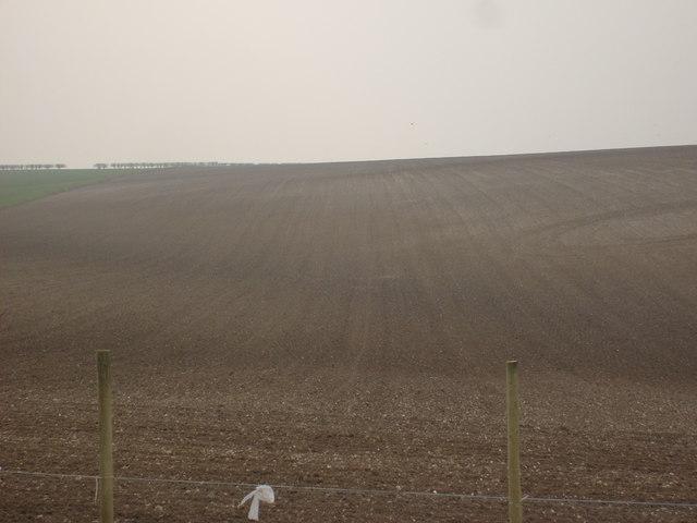 Fields off Kiplingcotes Lane