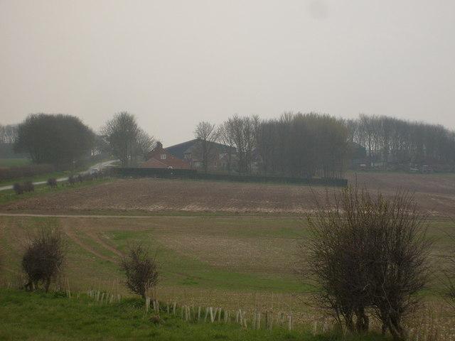 Arras Wold