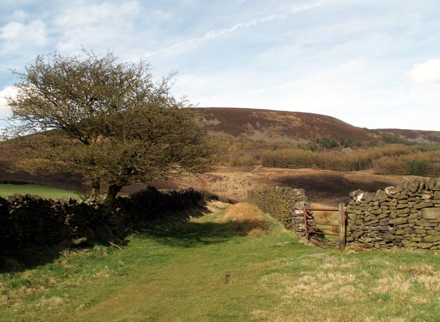 Bridleway to The A628