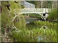 SO8953 : Footbridge in Spetchley Park Estate : Week 13