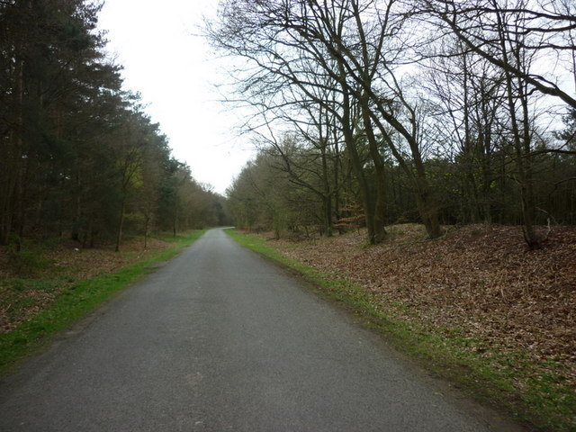 East Ferry Road towards Laughton