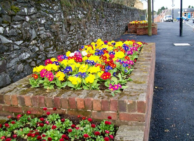 Road Bed Design Flower Beds in Lisburn Road