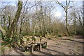 TQ7811 : Bench in Church Wood by N Chadwick