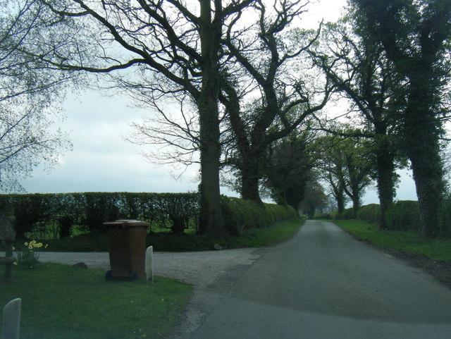 Lane to Brookhouse Green at Stonyflats