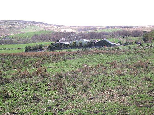 Gilligants Farm