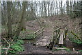 SJ7772 : The woodland crossing by Alan James
