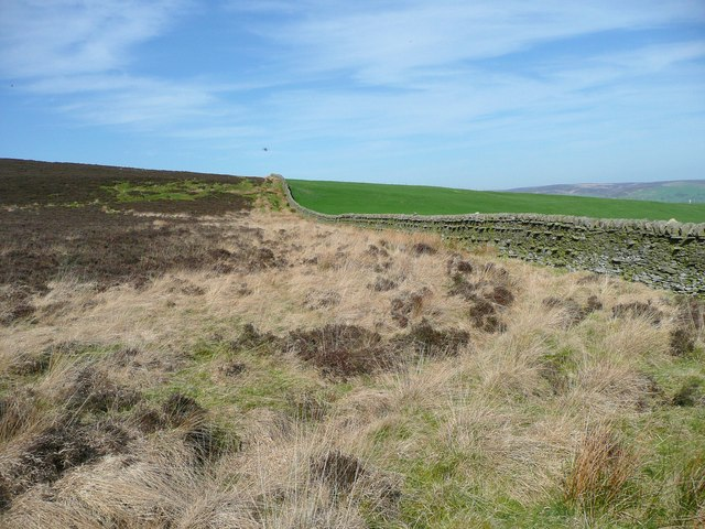 Eastern boundary wall of Draughton Moor
