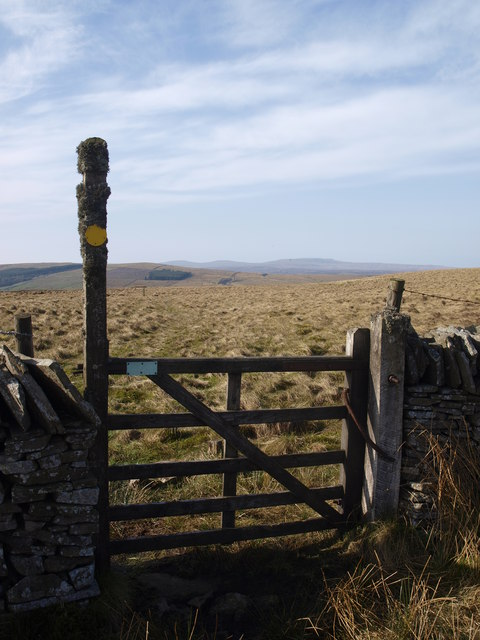 View through the stile