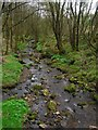 SD6712 : Stream in Walker Fold Woods by John Darch