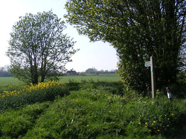 Footpath to Simpers Drift