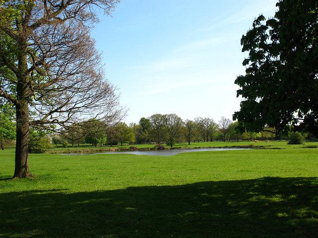 Norwood Park Dog Park