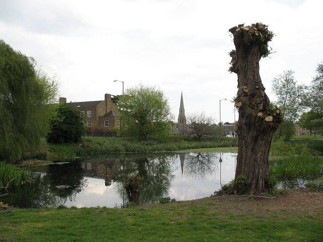 Small pond on Blackheath