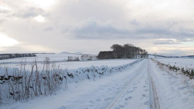 Southern Upland Way near Jeaniefield