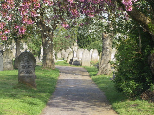 Spring in Nottingham Road Cemetery