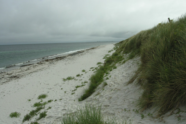 South end of Bay of Sowerdie