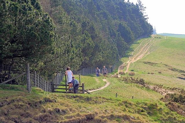 Public Bridleway along Haggside Ridge