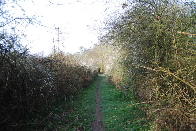 Wey South Path to Laker's Green