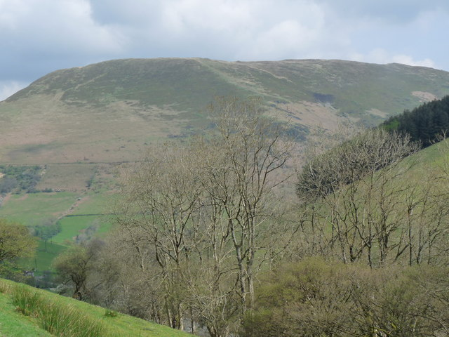 View northeast towards Foel Benddin