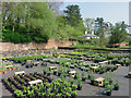 SO8686 : Prestwood Cave Nursery near Stourton, Staffordshire by Roger  Kidd