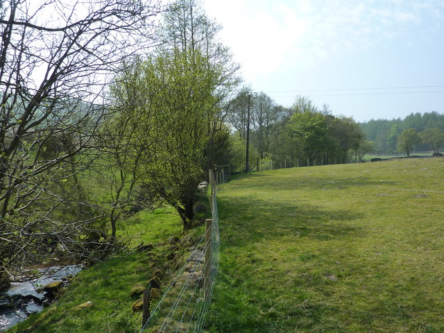 Farmland, hedgerows and stream