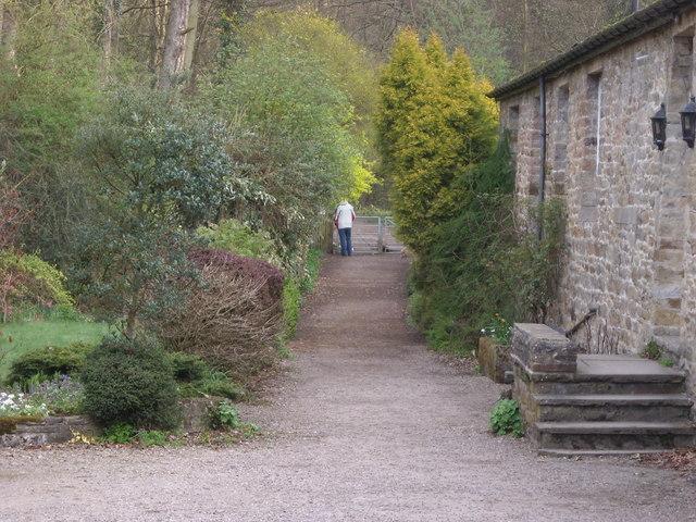 Pathway to Skipton Woods