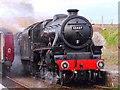 ND1559 : Steam at Georgemas Junction : Week 16