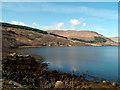 NM7959 : Port a' Challtuin, Loch Sunart : Week 16