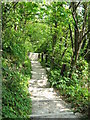 TR3644 : Steps to St.Margaret's Bay by David Anstiss