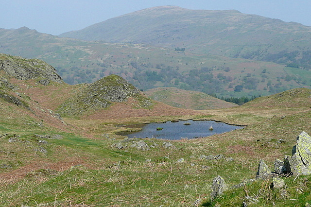 Tarn on Loughrigg